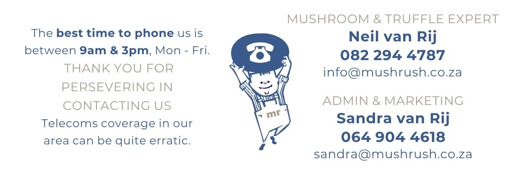 Contact number for Mushrush